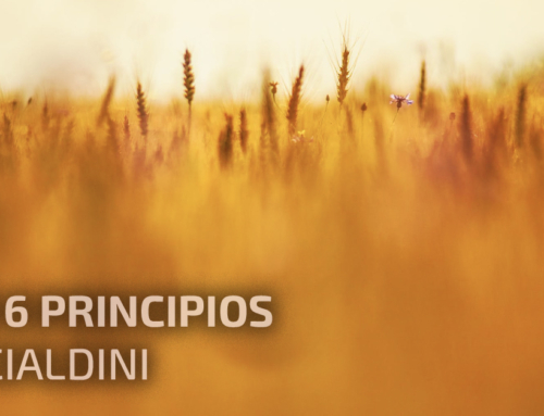 Los 6 principios de Cialdini