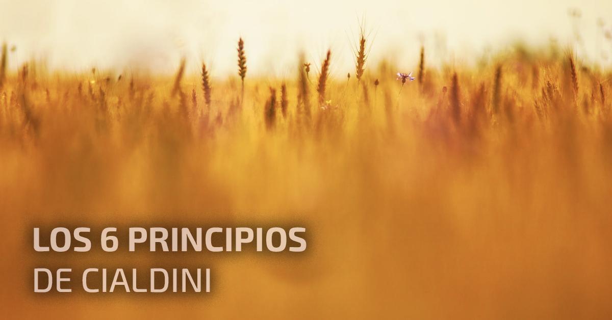 Los_6_principios_de_Cialdini